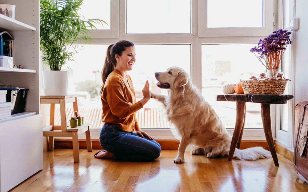 Come insegnare al tuo cane a fare i bisogni nei punti giusti
